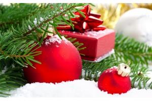 График работы магазина «Агроном»  в праздничные новогодние дни 2017 г