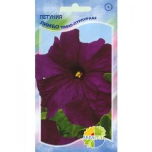 Петуния Лимбо темно-пурпурная (Акварель)