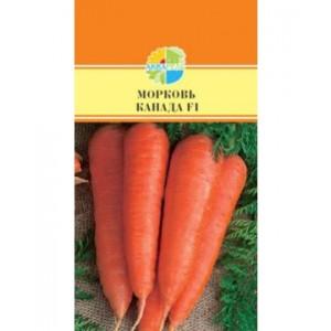 Морковь Канада F1 200 шт. (Акварель)