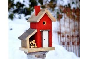 Садовые и сельскохозяйственные работы зимой