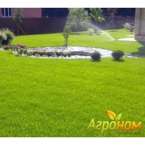 Газонная трава Дачная 10 кг Россия