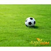 Газонная трава Спортивная 10 кг Россия