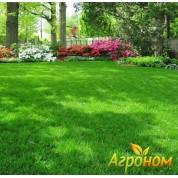Газонная трава Теневыносливая 10 кг Россия