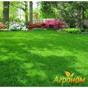 Газонная трава Теневыносливая 16 кг Россия