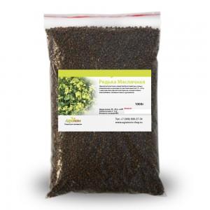 Редька маслиничная 1 кг