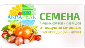 семена лучших сортов и гибридов от ведущих и мировых семеноводческих фирм